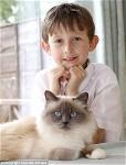 Cat Helps boy